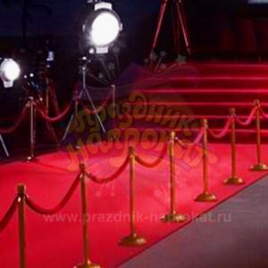 VIP Столбики ограждения с бархатными канатиками